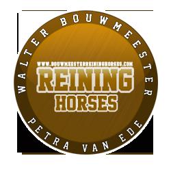 Bouwmeester Reining Horses